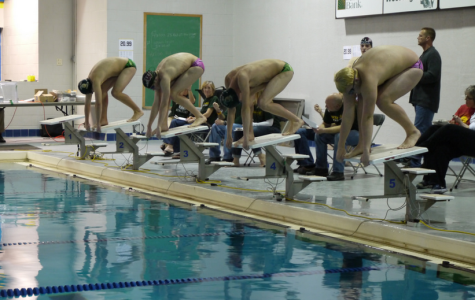West High boys swimming wins state