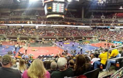 Four wrestlers place in top eight at state tournament