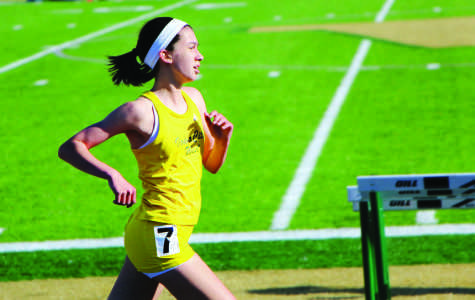 Track teams qualify for state meet