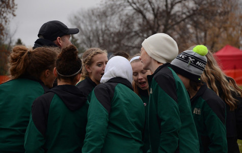 Cross country teams finish season at state meet