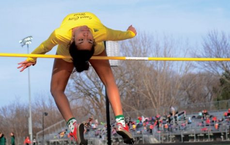 Track and field teams set to compete at state meet