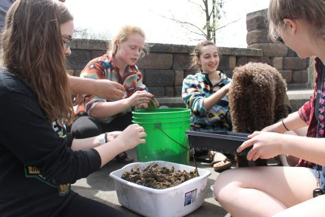 Students make seed balls in hopes of saving Iowa monarchs