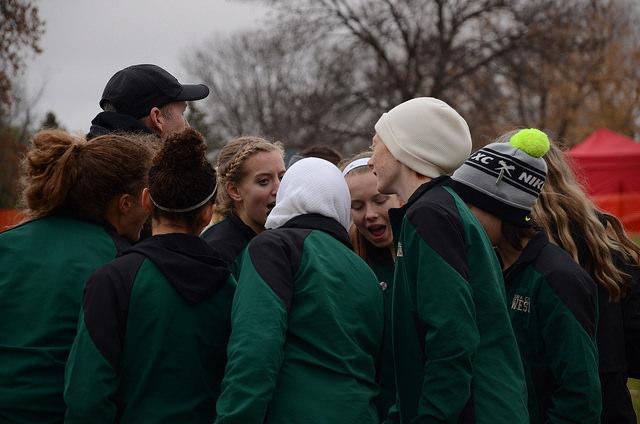 Cross country teams finish season at state meet