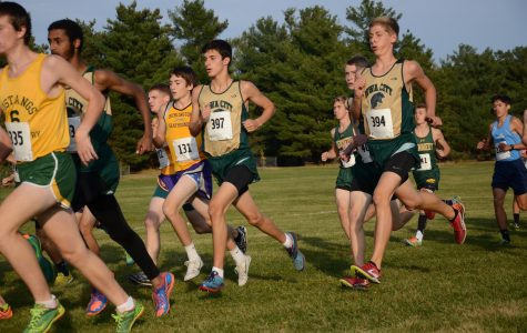Cross country state preview