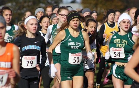 Cross country teams compete at state