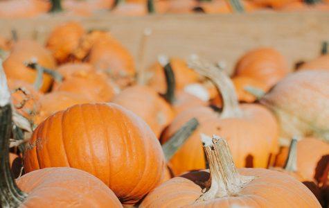 How to: Halloween