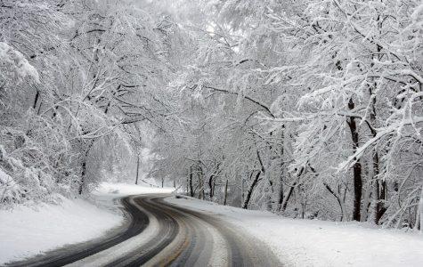 Seasonal Crossword: Winter