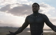 """Black Panther"" is a refreshingly original superhero film"