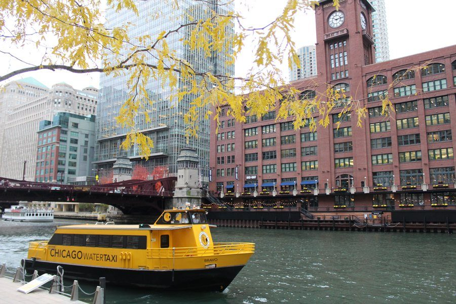 A watertaxi floats down the Chicago River as WSS staffers walk by while sightseeing on Thursday, Nov. 1.