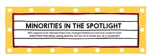 Minorities in the spotlight