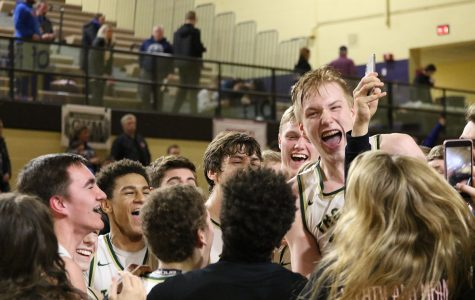 Boys basketball moves onto state tournament
