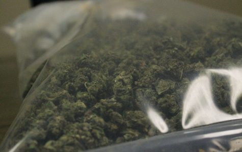 This marijuana was provided by the Coralville Police Department for photographs before it was disposed of properly.