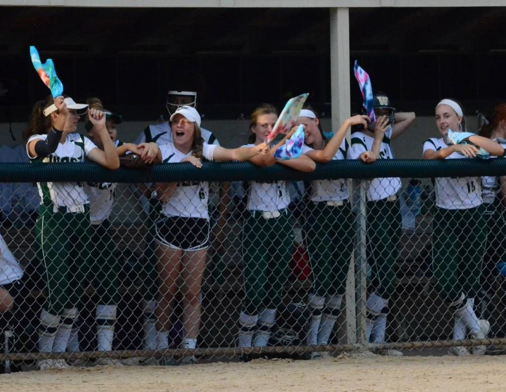 West High softball players cheer on Ryleigh Mulcahey '19 from the dugout on her senior night in a game against Cedar Rapids Washington on June 25.