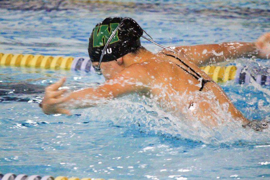 Heidi Du 23 swims in the 100 butterfly during the girls home sweet meet at the Coralville Recreation Center on Sept. 17.