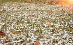 Spicing up the holidays: 8 winter festivities