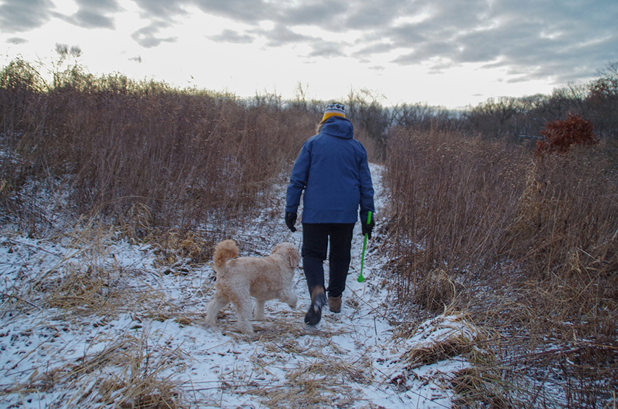 Karen Meyer walking on a trail at Harvest Preserve with her dog Scout.