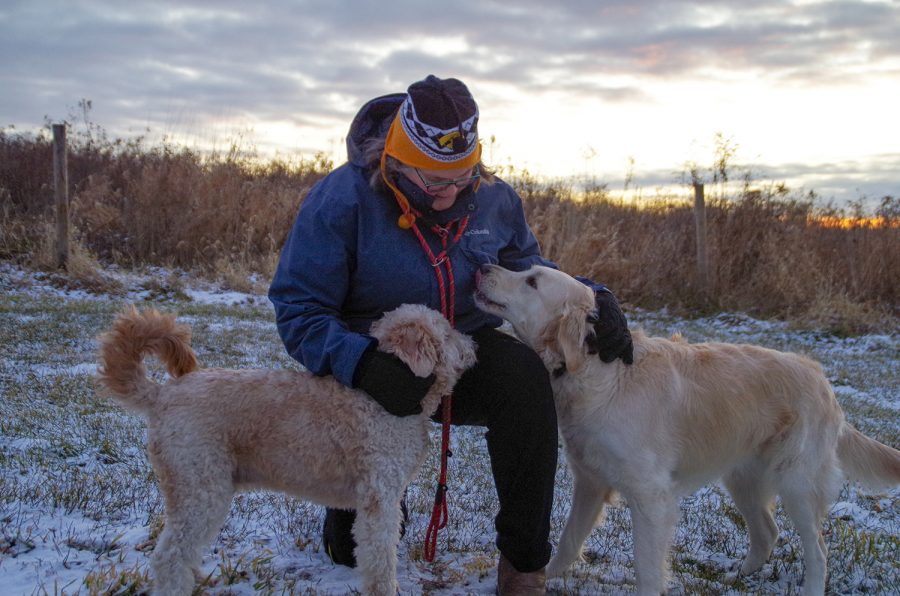 On the morning of Dec. 9, Karen Meyer takes her dogs to the Harvest Preserve Foundation to watch the sunrise.