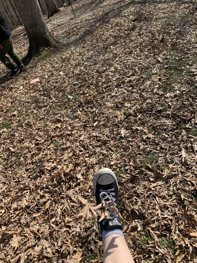 While at the reservoir on April 7, and in between Frisbee golf holes, I decided to kick some leaves around. It reminds me of spring, because I'm with my brother, and I'm outside. Kicking leaves around just makes me think of better times, rather than being stuck inside of the house.