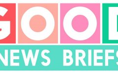 Good news briefs