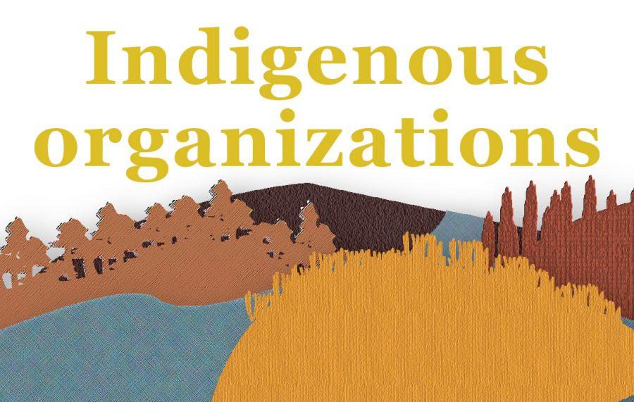 Indigenous+organizations