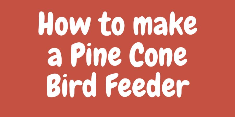 How+to+make+a+pine+cone+bird+feeder