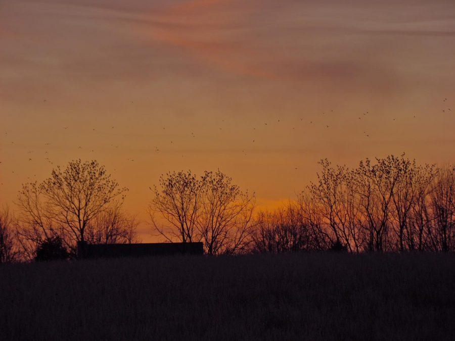 sunset+pt+3